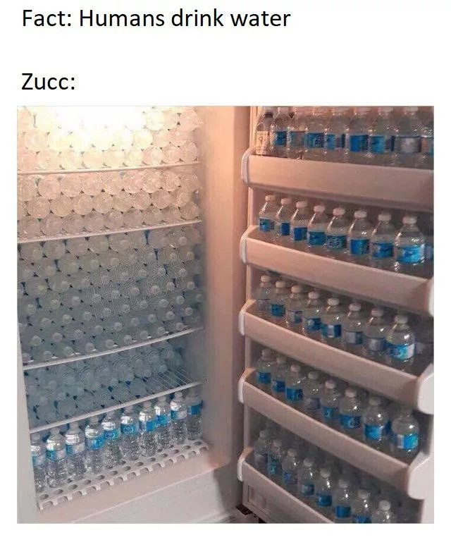 All this human data and zucc still cant human