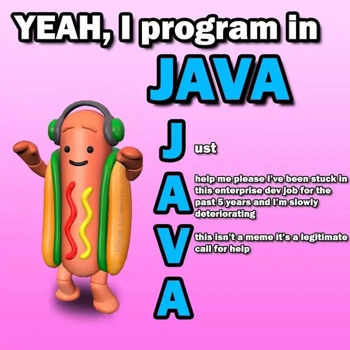YEAH I program in JAVA