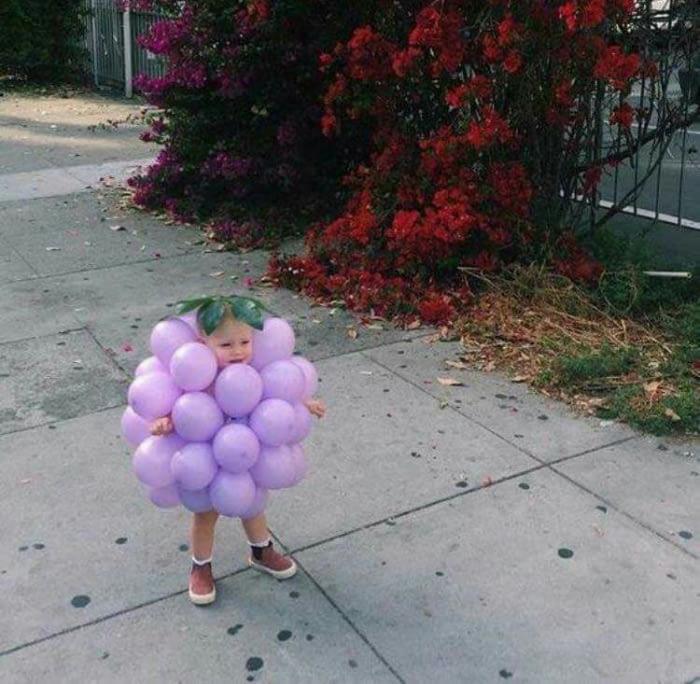Little grape I choose you